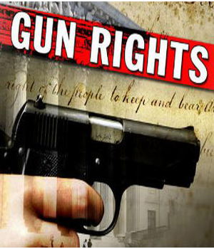 Update: Gun Rights Debate, Big Gov at Worst