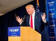 Presidential Politics 2016
